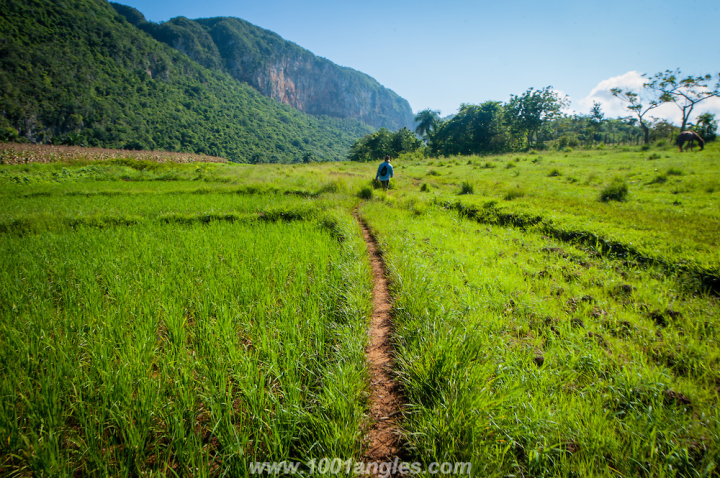 Hike through Vinales, Cuba