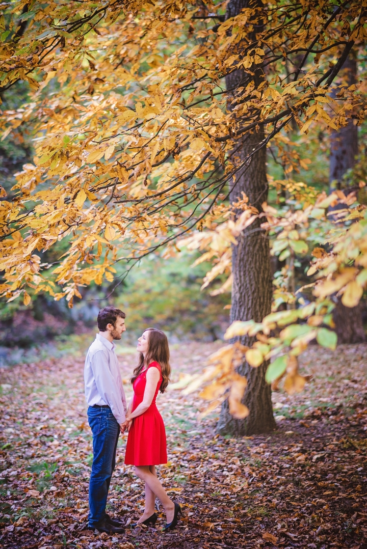 rock-creek-park-autumn-engagement-session-13
