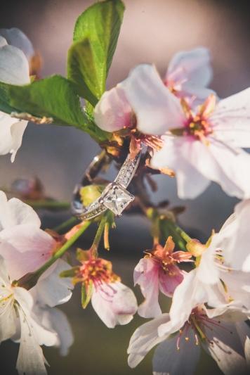 Tidal Basin Cherry Blossom Engagement Session-2