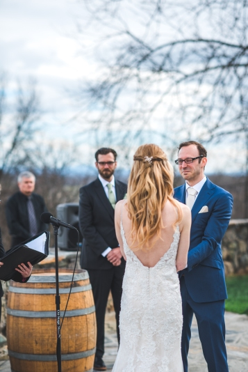 Bluemont Vineyard Wedding Virginia-51