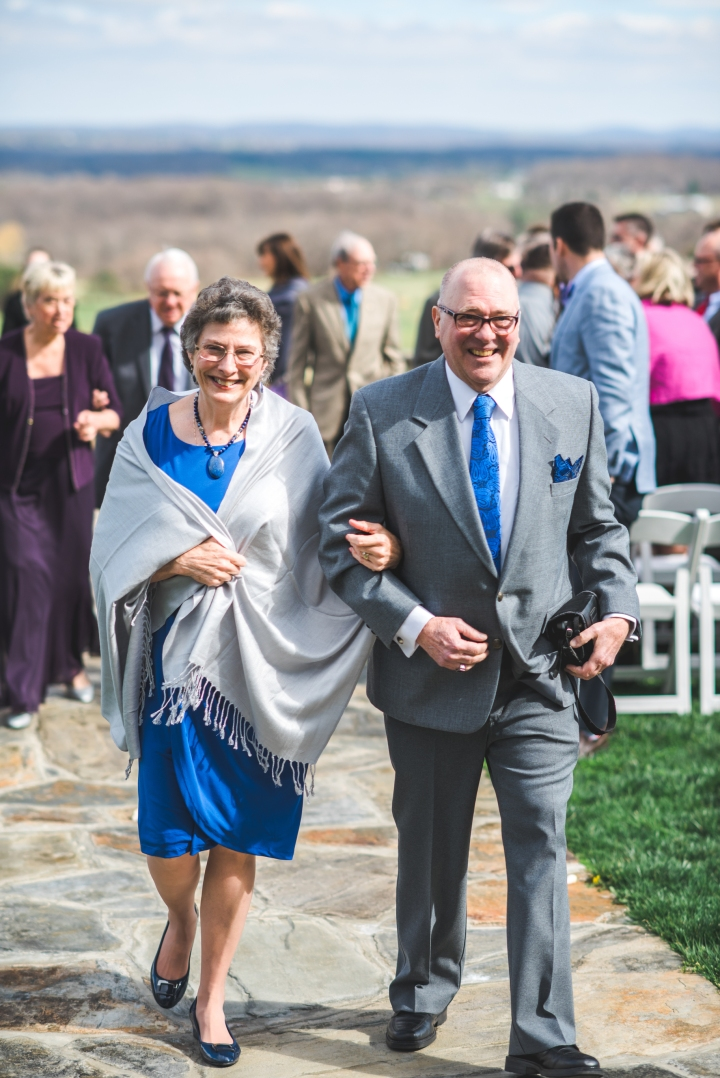 Bluemont Vineyard Wedding Virginia-55