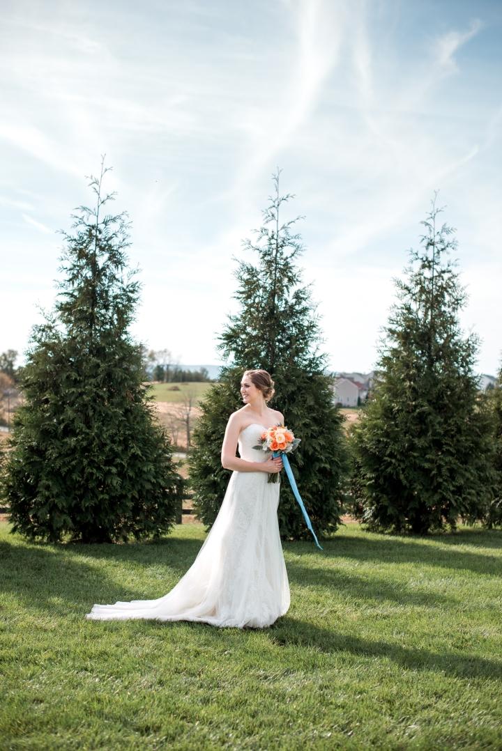 Shadow Creek Wedding Virginia-40