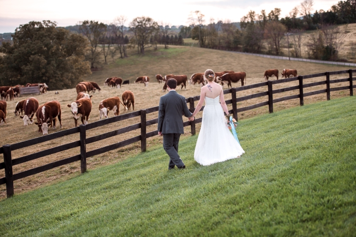 Shadow Creek Wedding Virginia-99
