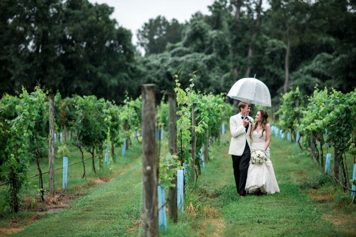 Ashton Creek Vineyard Wedding Virginia-64